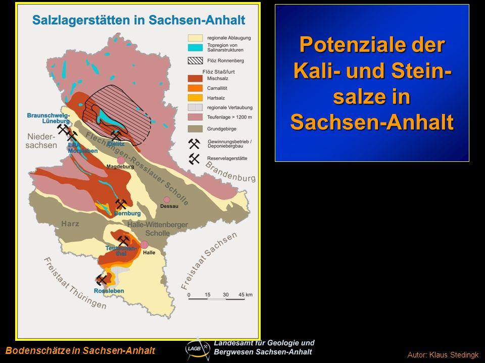 Mitteldeutscher Raum BRK-Potenziale Autor: Klaus Stedingk Bodenschätze in Sachsen-Anhalt