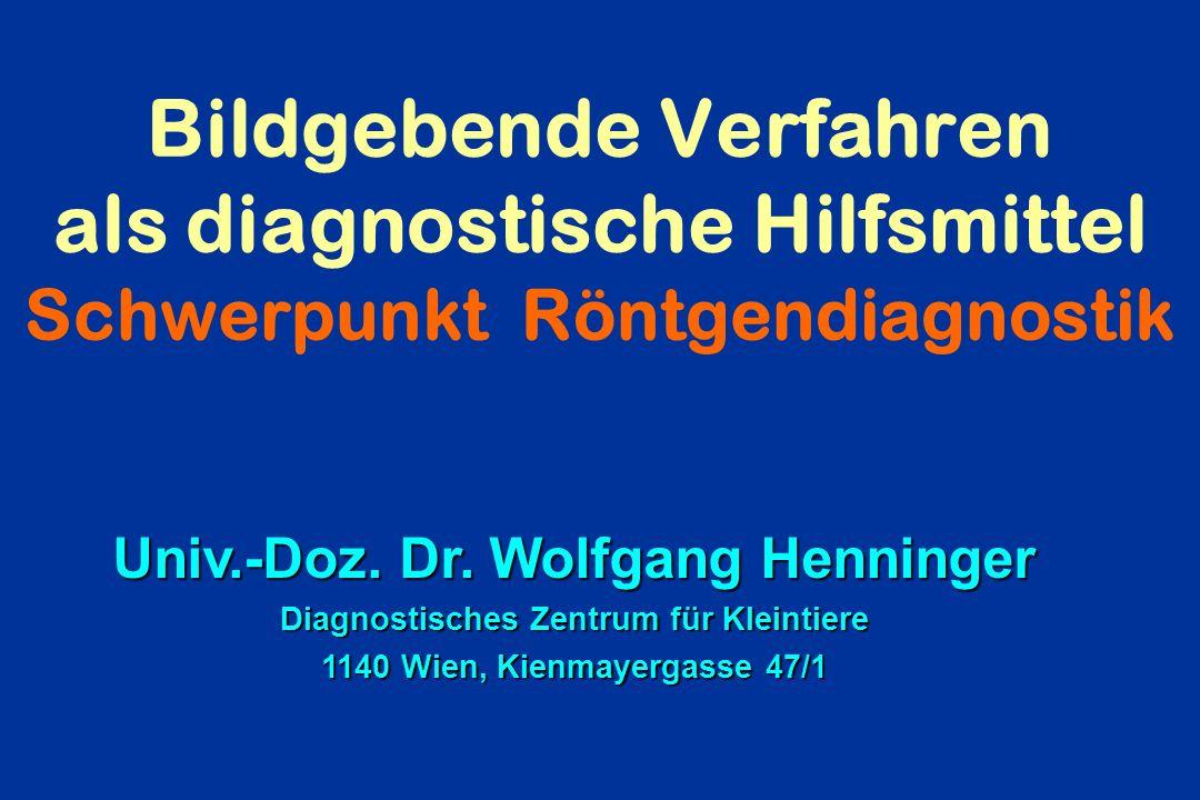 Bildgebende Verfahren als diagnostische Hilfsmittel Schwerpunkt Röntgendiagnostik Univ.-Doz. Dr. Wolfgang Henninger Diagnostisches Zentrum für Kleinti