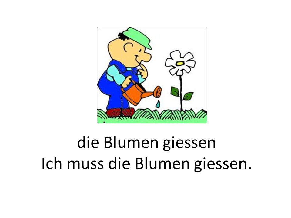 die Blumen giessen Ich muss die Blumen giessen.