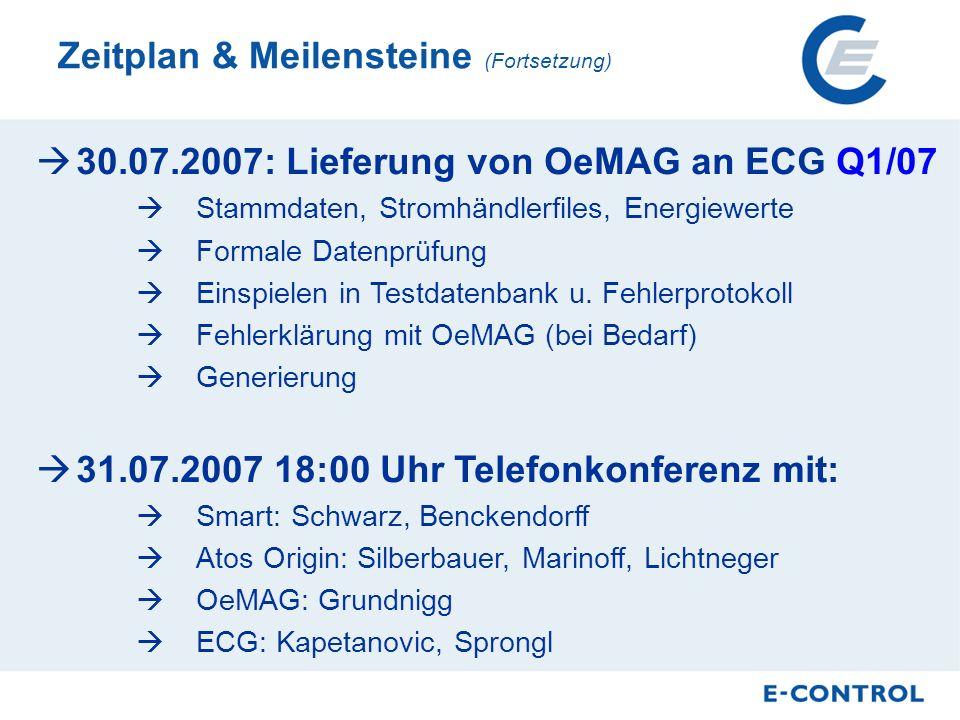 30.07.2007: Lieferung von OeMAG an ECG Q1/07 Stammdaten, Stromhändlerfiles, Energiewerte Formale Datenprüfung Einspielen in Testdatenbank u.