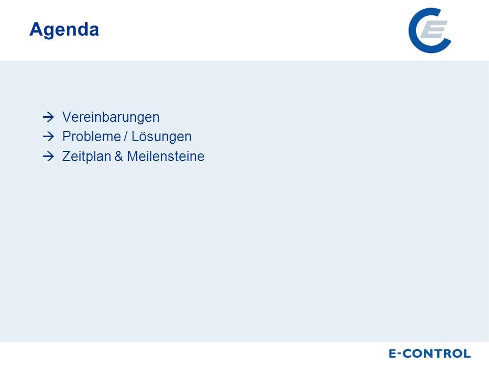 Agenda Vereinbarungen Probleme / Lösungen Zeitplan & Meilensteine