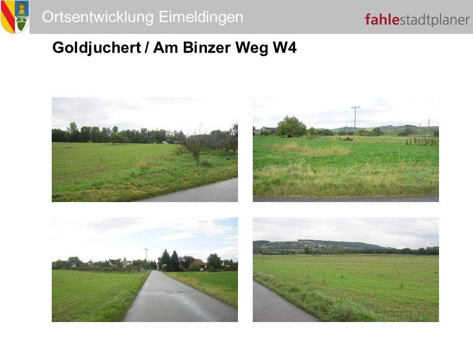 Ortsentwicklung Eimeldingen Goldjuchert / Am Binzer Weg W4