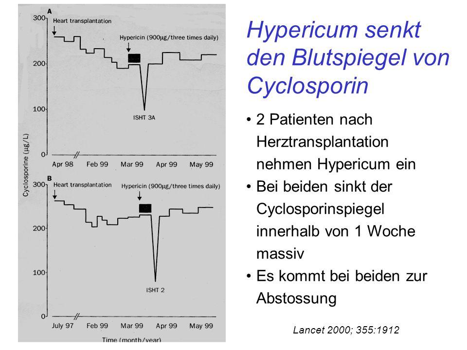 Hypericum senkt den Blutspiegel von Cyclosporin Lancet 2000; 355:1912 2 Patienten nach Herztransplantation nehmen Hypericum ein Bei beiden sinkt der Cyclosporinspiegel innerhalb von 1 Woche massiv Es kommt bei beiden zur Abstossung