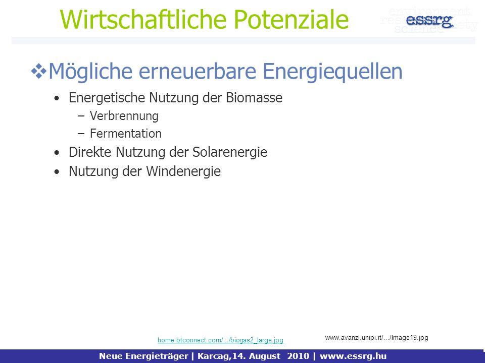 Wirtschaftliche Potenziale Mögliche erneuerbare Energiequellen Energetische Nutzung der Biomasse –Verbrennung –Fermentation Direkte Nutzung der Solare