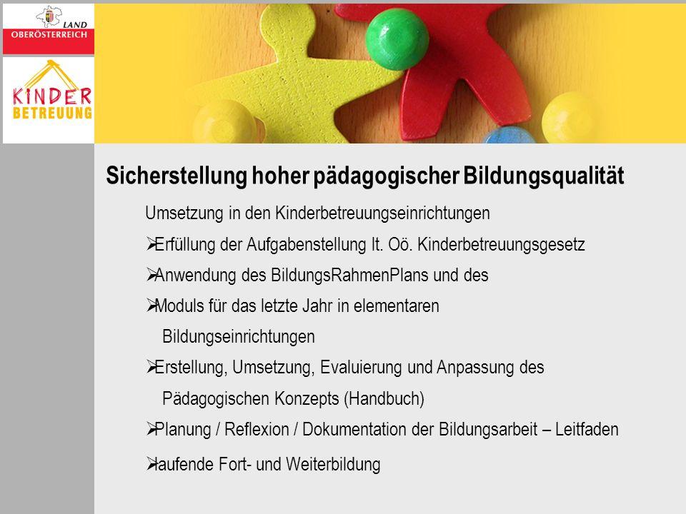 Sicherstellung hoher pädagogischer Bildungsqualität Umsetzung in den Kinderbetreuungseinrichtungen Erfüllung der Aufgabenstellung lt. Oö. Kinderbetreu