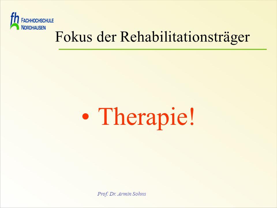 Prof. Dr. Armin Sohns Fokus der Rehabilitationsträger Therapie!