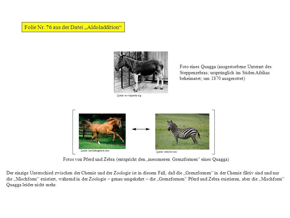 Fotos von Pferd und Zebra (entspricht den mesomeren Grenzformen eines Quagga) Der einzige Unterschied zwischen der Chemie und der Zoologie ist in dies