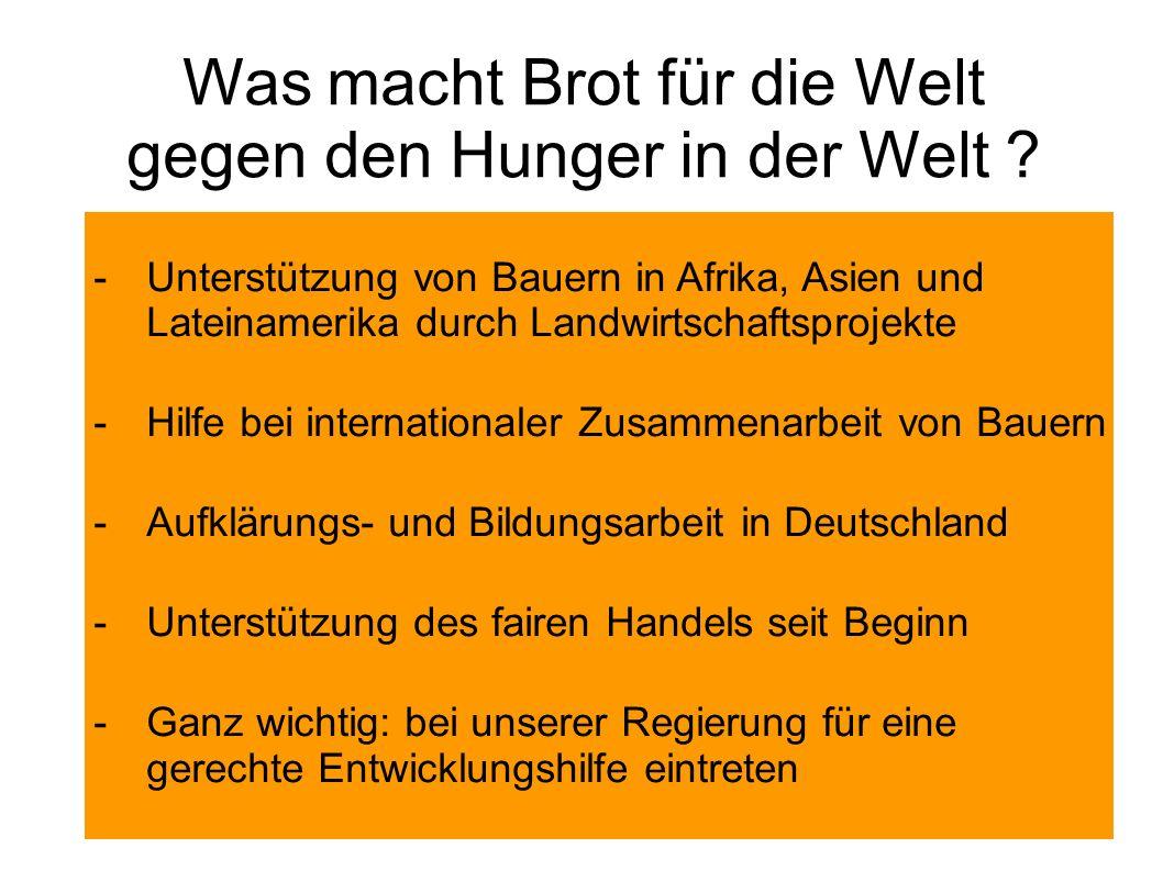 Was macht Brot für die Welt gegen den Hunger in der Welt .