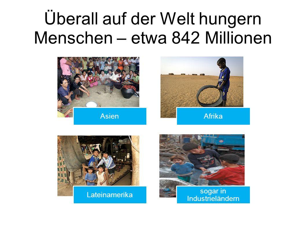 Überall auf der Welt hungern Menschen – etwa 842 Millionen AsienAfrika Lateinamerika sogar in Industrieländern