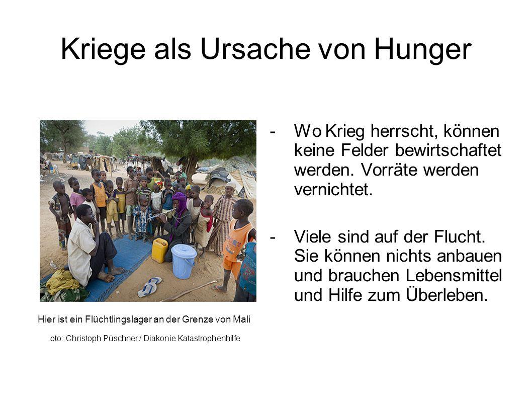 Kriege als Ursache von Hunger Hier ist ein Flüchtlingslager an der Grenze von Mali oto: Christoph Püschner / Diakonie Katastrophenhilfe -Wo Krieg herrscht, können keine Felder bewirtschaftet werden.