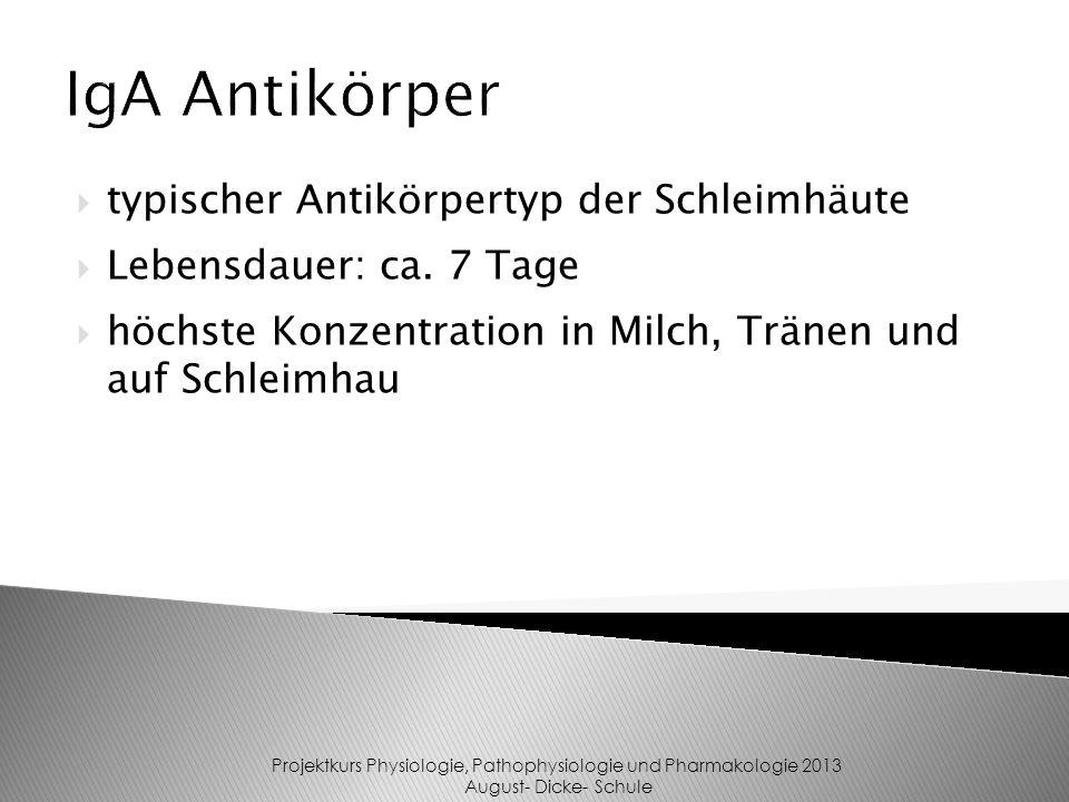 typischer Antikörpertyp der Schleimhäute Lebensdauer: ca.