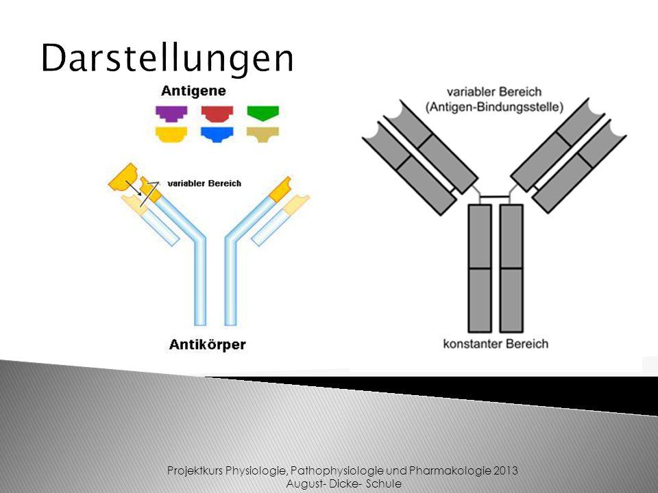 Darstellungen Projektkurs Physiologie, Pathophysiologie und Pharmakologie 2013 August- Dicke- Schule