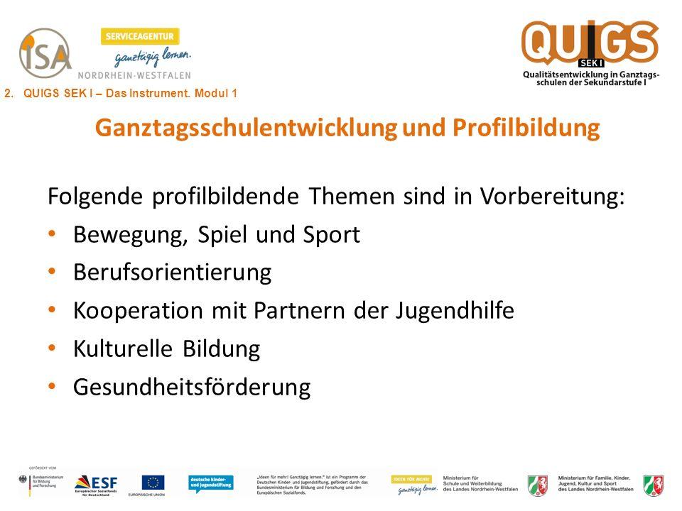 Ganztagsschulentwicklung und Profilbildung Folgende profilbildende Themen sind in Vorbereitung: Bewegung, Spiel und Sport Berufsorientierung Kooperati
