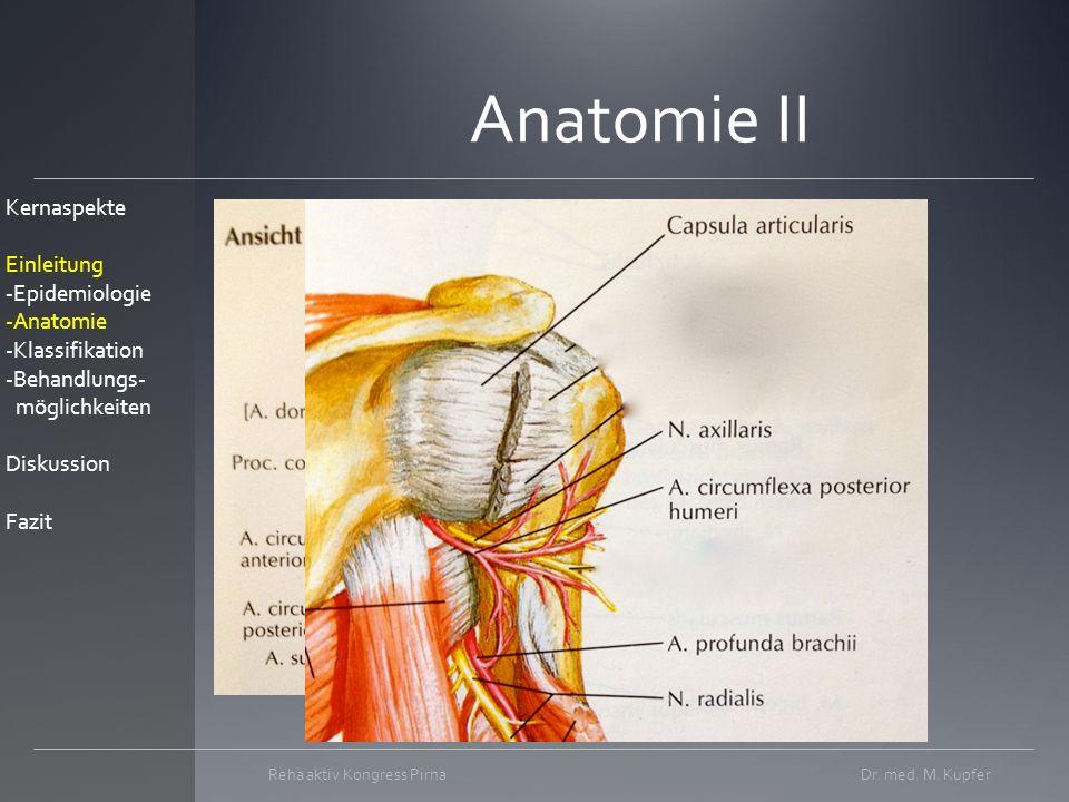 Anatomie II Dr.med. M.