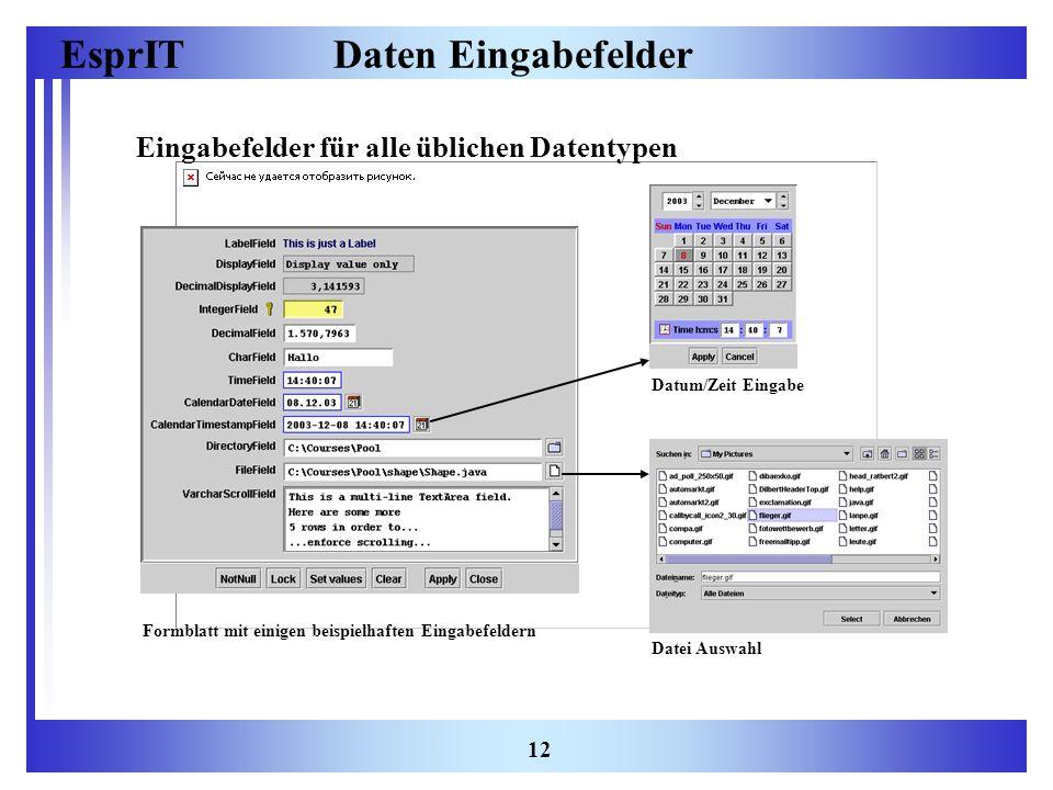 EsprIT 12 Daten Eingabefelder Eingabefelder für alle üblichen Datentypen Datum/Zeit Eingabe Formblatt mit einigen beispielhaften Eingabefeldern Datei