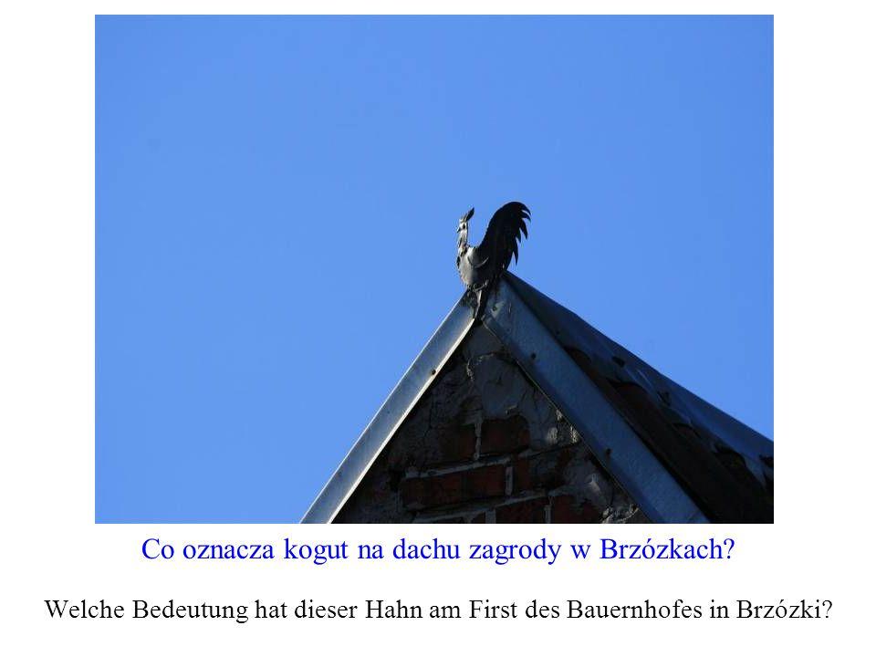 Co oznacza kogut na dachu zagrody w Brzózkach? Welche Bedeutung hat dieser Hahn am First des Bauernhofes in Brzózki?