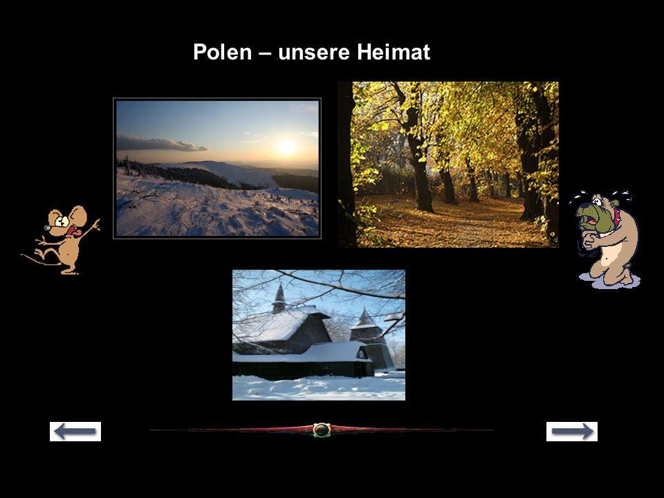 Polen in Kürze Polen hat eine Fläche von 312700 qkm und ca.