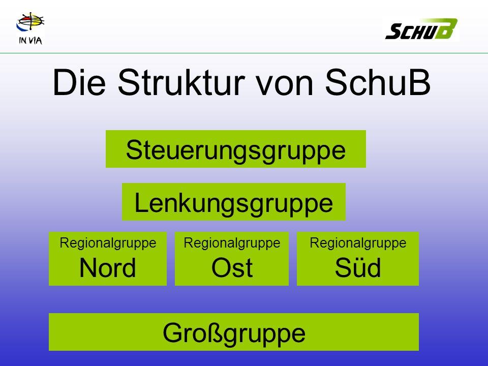 Großgruppe Regionalgruppe Nord Regionalgruppe Ost Regionalgruppe Süd Lenkungsgruppe Steuerungsgruppe Die Struktur von SchuB