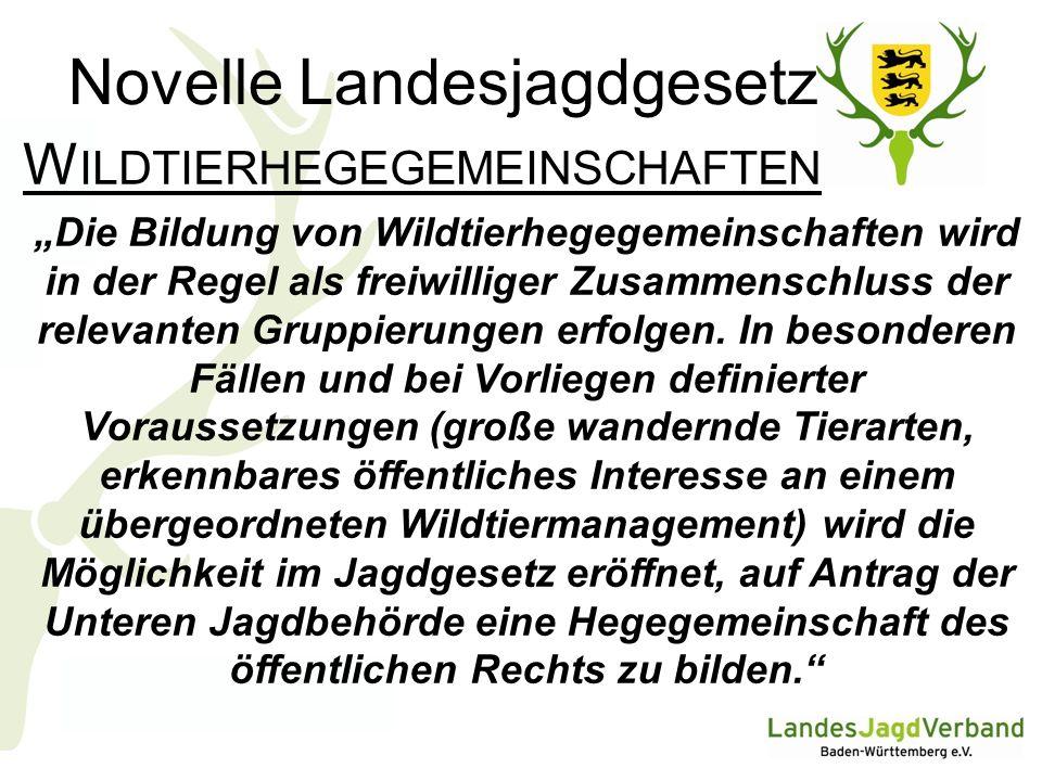 Novelle Landesjagdgesetz W ILDFÜTTERUNG I Fütterung ist im Grundsatz zu verbieten.