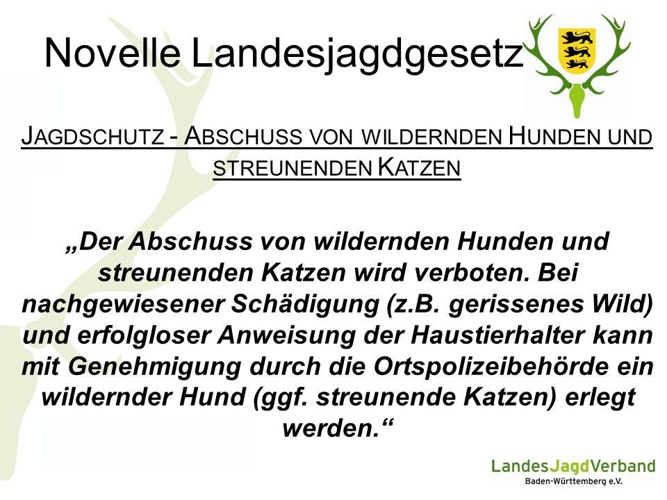 Novelle Landesjagdgesetz J AGDSCHUTZ - A BSCHUSS VON WILDERNDEN H UNDEN UND STREUNENDEN K ATZEN Der Abschuss von wildernden Hunden und streunenden Katzen wird verboten.