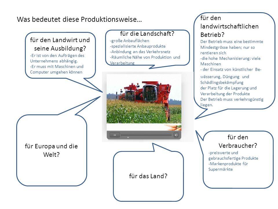 Was bedeutet diese Produktionsweise… für das Land? für Europa und die Welt? für die Landschaft? -große Anbauflächen -spezialisierte Anbauprodukte -Anb
