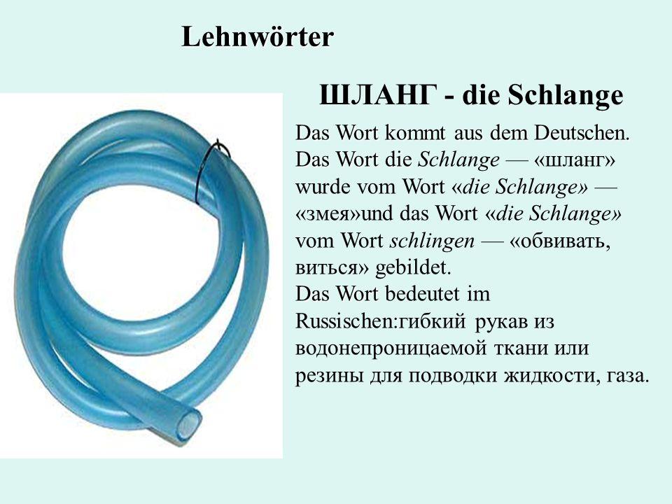 ШЛАНГ - die Schlange Das Wort kommt aus dem Deutschen. Das Wort die Das Wort kommt aus dem Deutschen. Das Wort die Schlange «шланг» wurde vom Wort «di