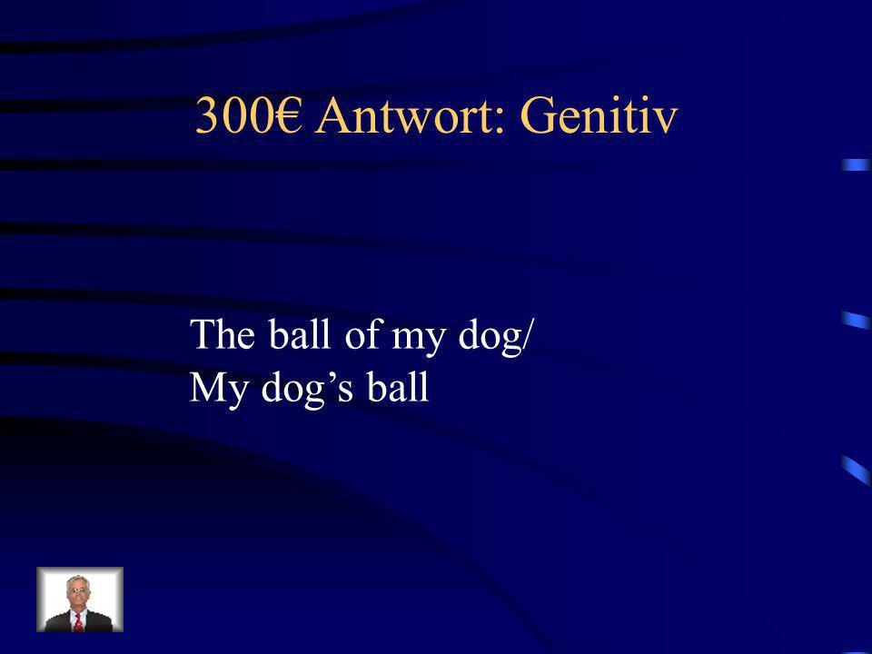 300 Frage: Genitiv Was bedeutet, Der Ball meines Hundes.?