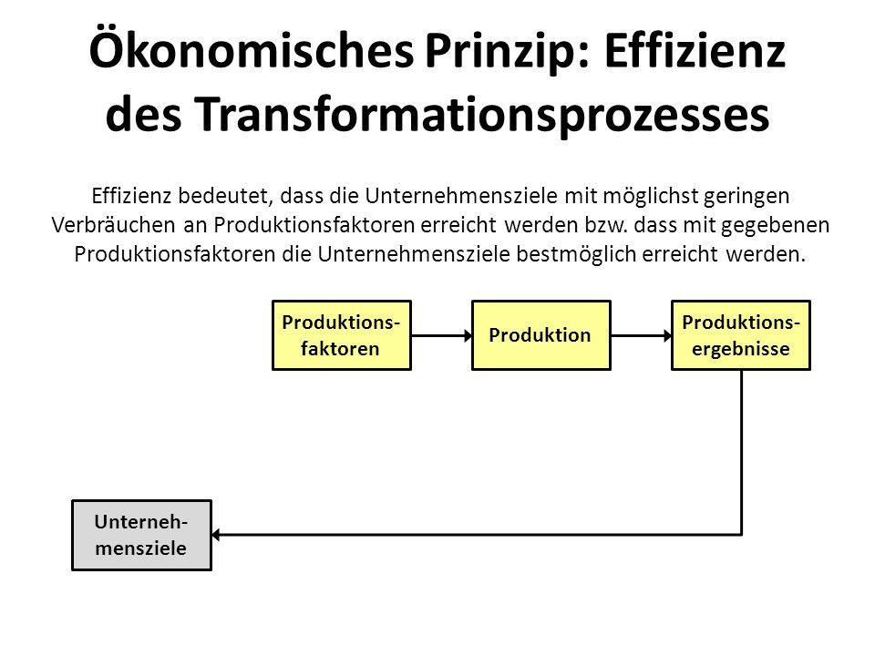 Störgrößen führen zu ständiger Adaption der Produktionsvorgaben, um die Unternehmensziele zu erreichen.