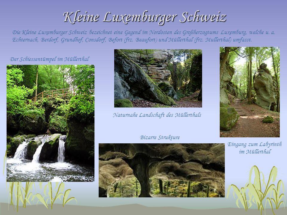 Kleine Luxemburger Schweiz Die Kleine Luxemburger Schweiz bezeichnet eine Gegend im Nordosten des Großherzogtums Luxemburg, welche u. a. Echternach, B