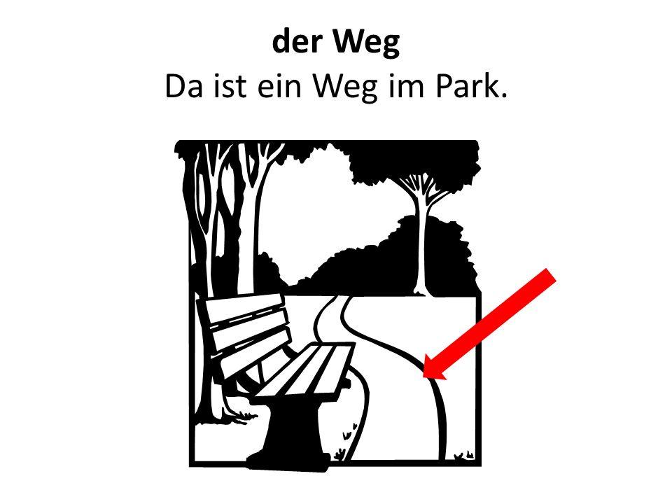 der Weg Da ist ein Weg im Park.