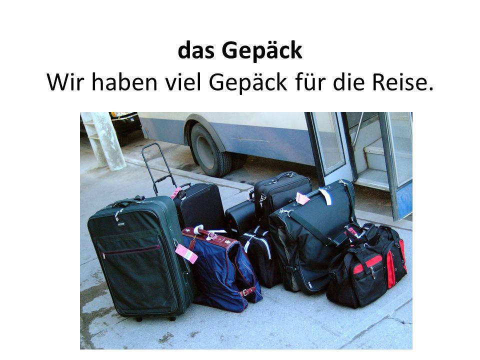 das Gepäck Wir haben viel Gepäck für die Reise.