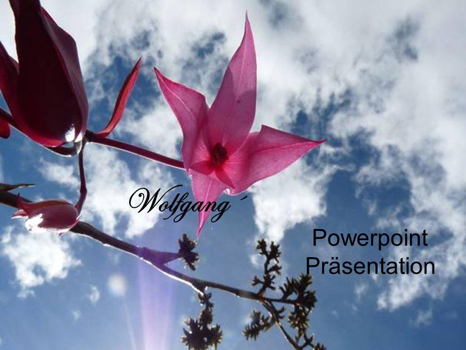 Wolfgang´ Powerpoint Präsentation