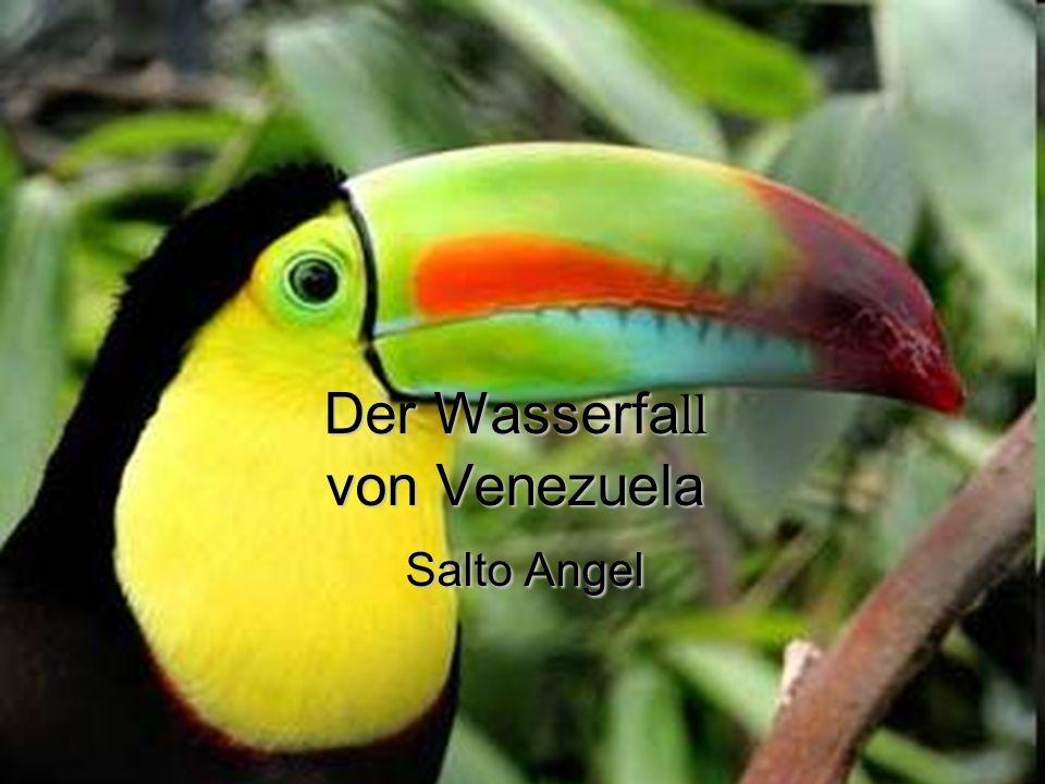 Der Wasserfa ll von Venezuela Salto Angel