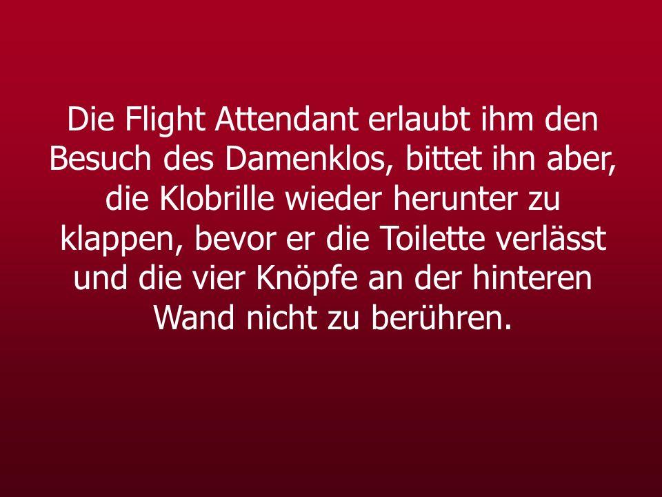 Die Flight Attendant erlaubt ihm den Besuch des Damenklos, bittet ihn aber, die Klobrille wieder herunter zu klappen, bevor er die Toilette verlässt u