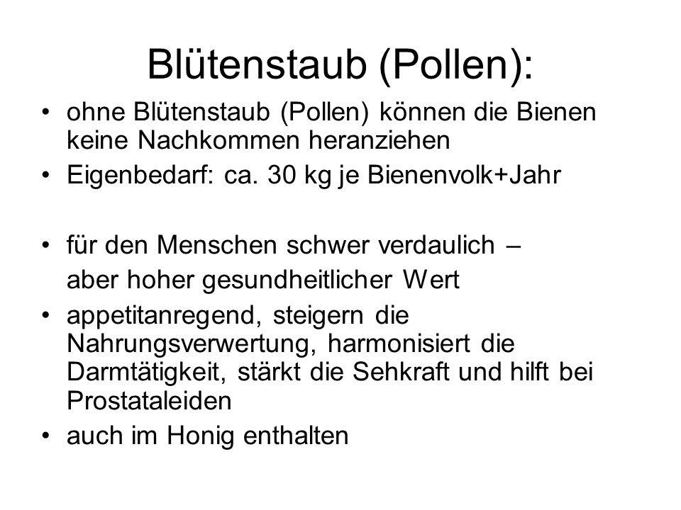 Blütenstaub (Pollen): ohne Blütenstaub (Pollen) können die Bienen keine Nachkommen heranziehen Eigenbedarf: ca. 30 kg je Bienenvolk+Jahr für den Mensc