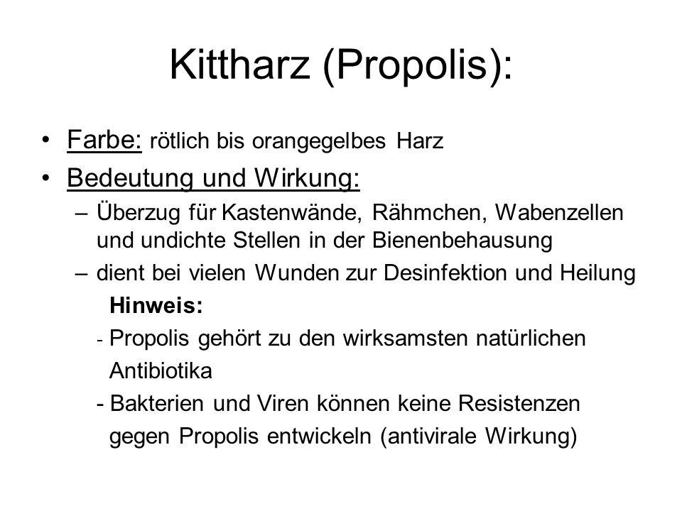 Kittharz (Propolis): Farbe: rötlich bis orangegelbes Harz Bedeutung und Wirkung: –Überzug für Kastenwände, Rähmchen, Wabenzellen und undichte Stellen