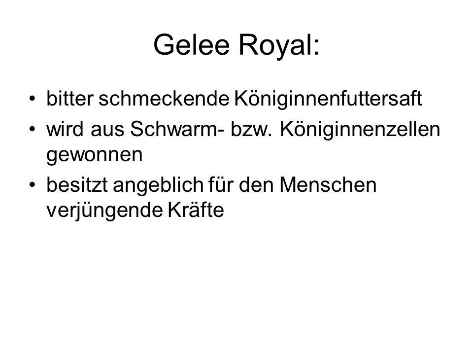 Gelee Royal: bitter schmeckende Königinnenfuttersaft wird aus Schwarm- bzw. Königinnenzellen gewonnen besitzt angeblich für den Menschen verjüngende K