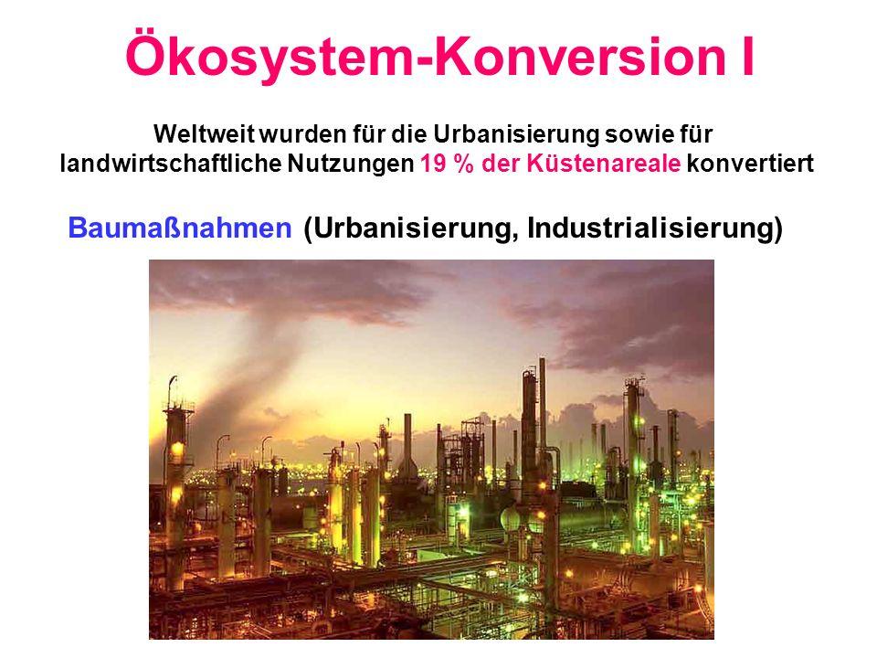 Ökosystem-Konversion I Baumaßnahmen (Urbanisierung, Industrialisierung) Weltweit wurden für die Urbanisierung sowie für landwirtschaftliche Nutzungen