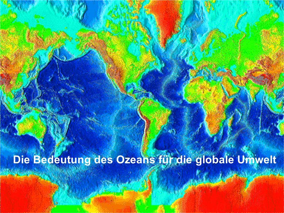 Die Bedeutung des Ozeans für die globale Umwelt
