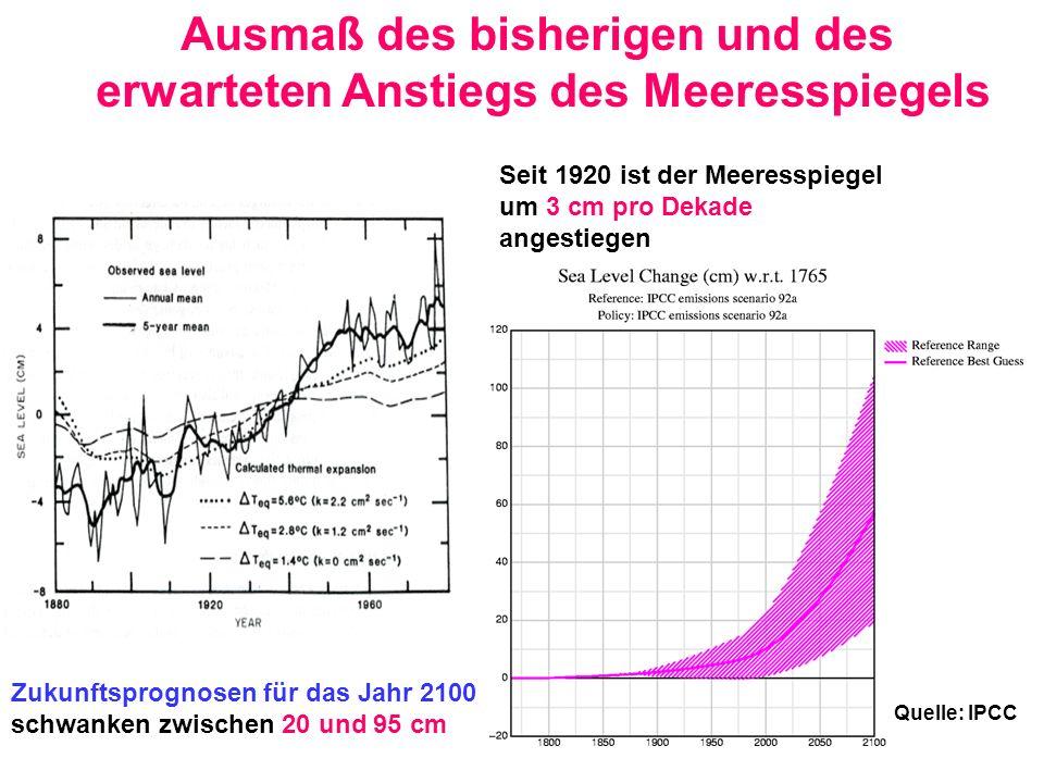 Seit 1920 ist der Meeresspiegel um 3 cm pro Dekade angestiegen Quelle: IPCC Zukunftsprognosen für das Jahr 2100 schwanken zwischen 20 und 95 cm Ausmaß