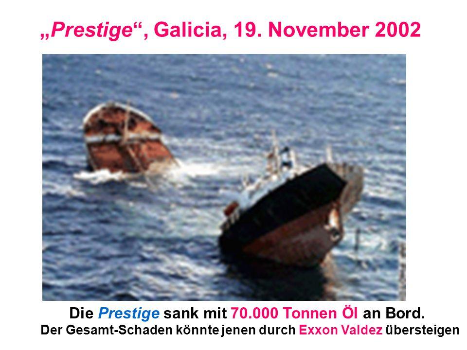 Prestige, Galicia, 19. November 2002 Die Prestige sank mit 70.000 Tonnen Öl an Bord. Der Gesamt-Schaden könnte jenen durch Exxon Valdez übersteigen