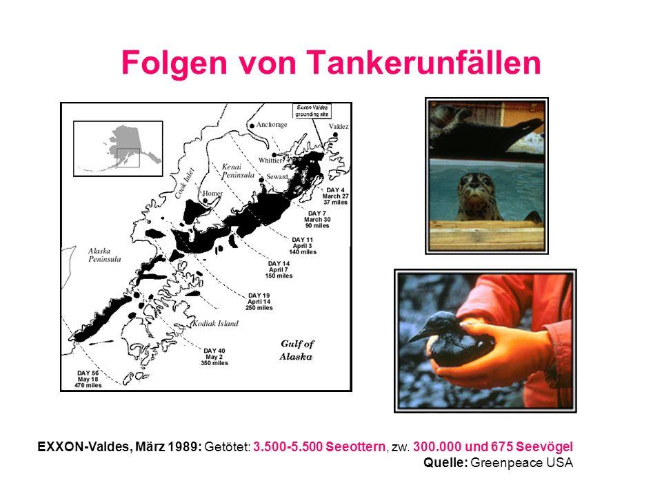 Folgen von Tankerunfällen EXXON-Valdes, März 1989: Getötet: 3.500-5.500 Seeottern, zw. 300.000 und 675 Seevögel Quelle: Greenpeace USA