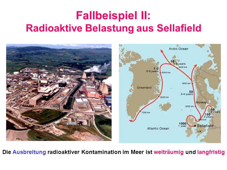 Fallbeispiel II: Radioaktive Belastung aus Sellafield Die Ausbreitung radioaktiver Kontamination im Meer ist weiträumig und langfristig