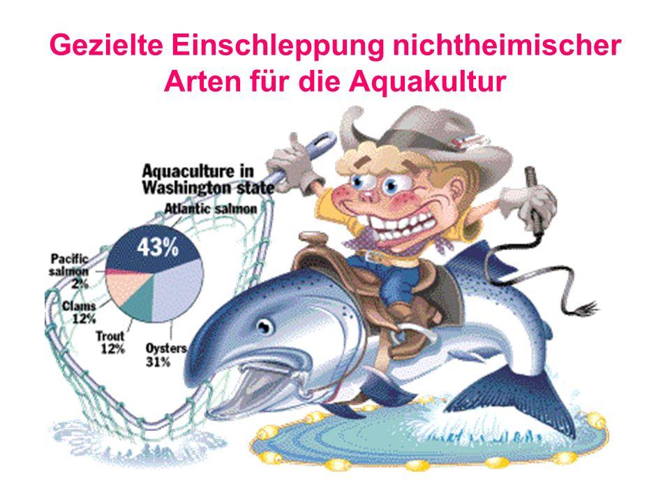 Gezielte Einschleppung nichtheimischer Arten für die Aquakultur