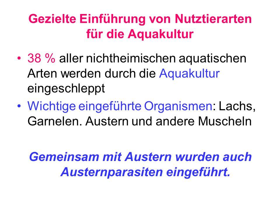 Gezielte Einführung von Nutztierarten für die Aquakultur 38 % aller nichtheimischen aquatischen Arten werden durch die Aquakultur eingeschleppt Wichti