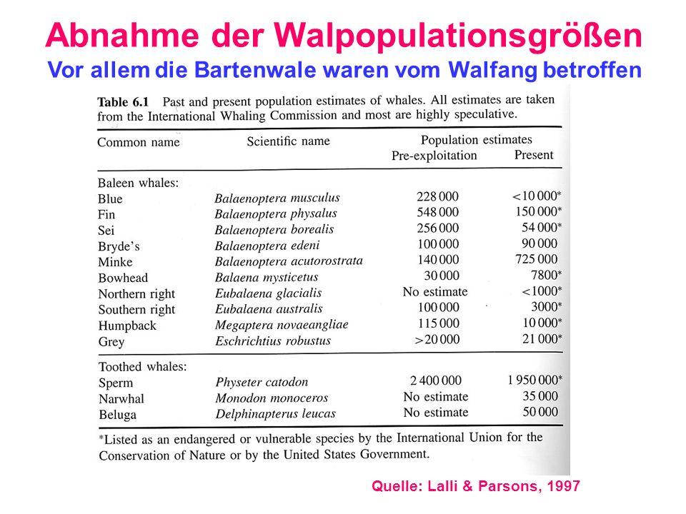 Abnahme der Walpopulationsgrößen Quelle: Lalli & Parsons, 1997 Vor allem die Bartenwale waren vom Walfang betroffen