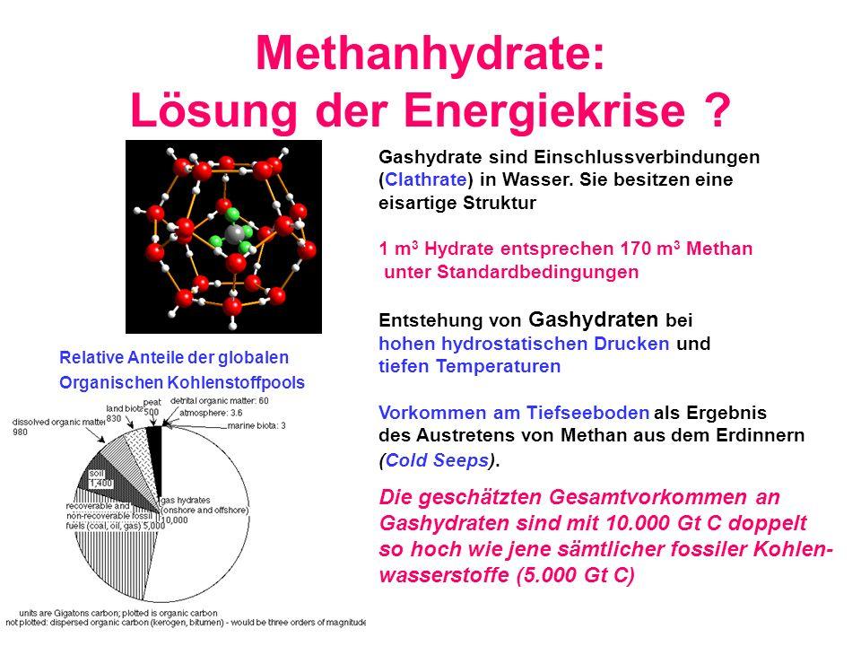 Methanhydrate: Lösung der Energiekrise ? Gashydrate sind Einschlussverbindungen (Clathrate) in Wasser. Sie besitzen eine eisartige Struktur 1 m 3 Hydr