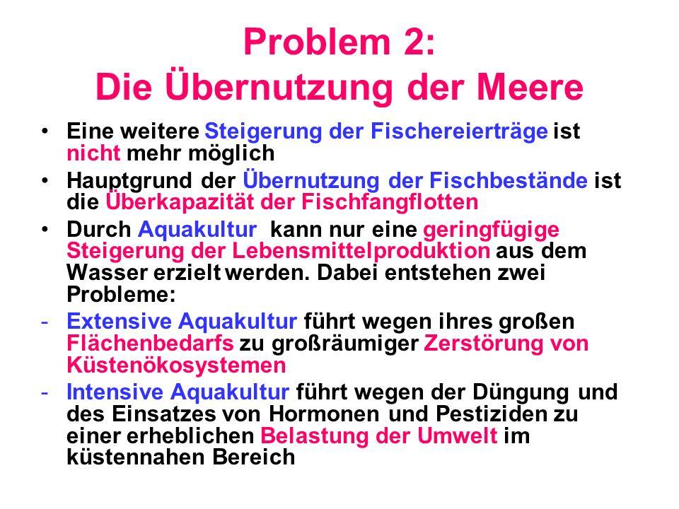 Problem 2: Die Übernutzung der Meere Eine weitere Steigerung der Fischereierträge ist nicht mehr möglich Hauptgrund der Übernutzung der Fischbestände