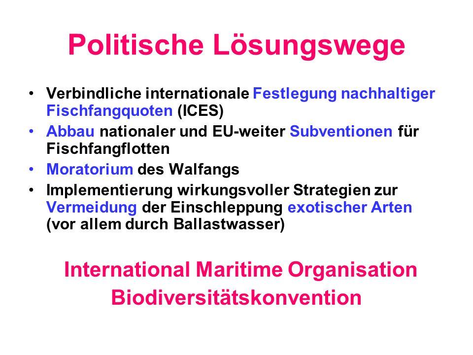 Politische Lösungswege Verbindliche internationale Festlegung nachhaltiger Fischfangquoten (ICES) Abbau nationaler und EU-weiter Subventionen für Fisc