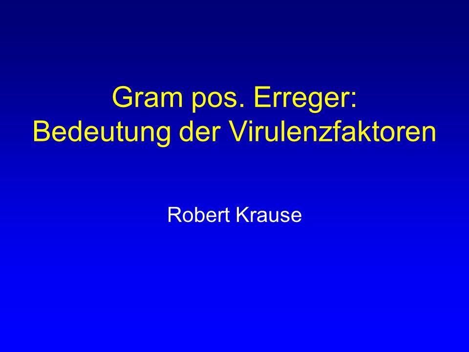 Gram pos. Erreger: Bedeutung der Virulenzfaktoren Robert Krause